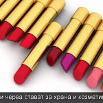 vol-35-3-which-intestines-for-food-and-cosmetics